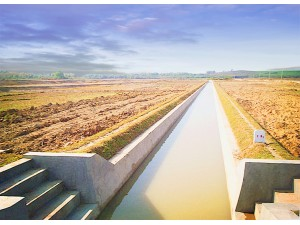 农田综合整治项目